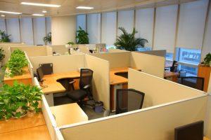Feng Shui Office Tips